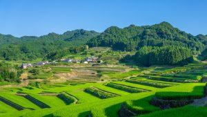 Onigitanada – Hasami's Terraced Rice Field