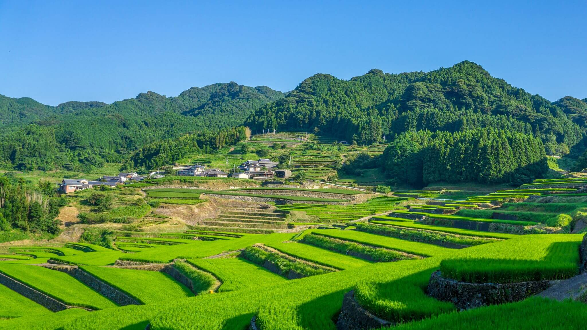Onigitanada – Hasami's Terraced Rice Field
